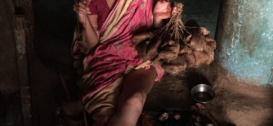 Cultural Adventure India