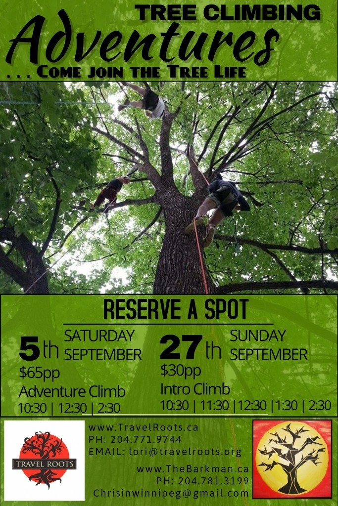 Tree climbing Adventures september