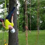 tree climbing fun