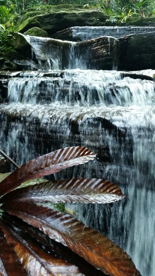 water fall at Mayantuyacu