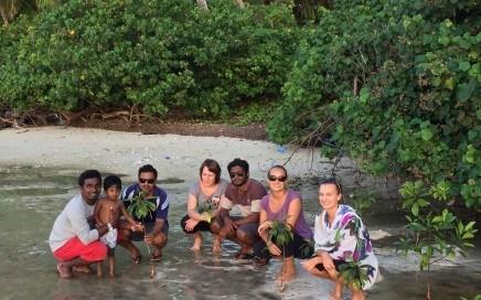 Maldives Mangrove Planting