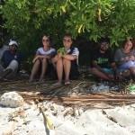 Mangroves of Maldives