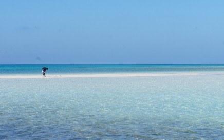 Volunteer Adventure in Maldives